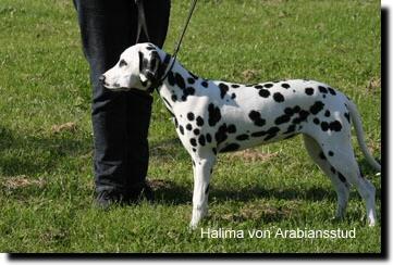 Halima_training_01.jpg